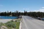 Fishing Bridge #2